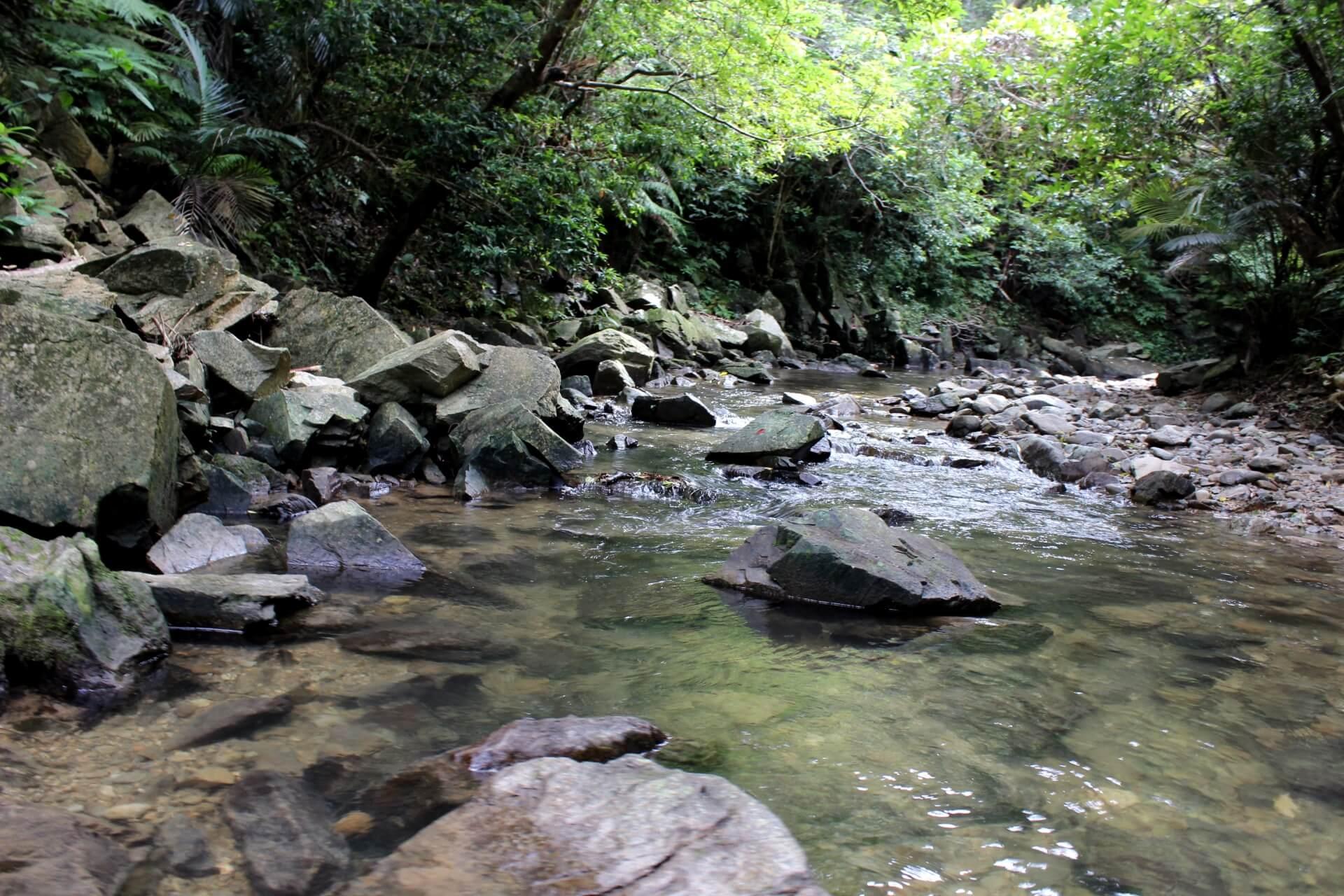 ター滝 | 沖縄観光情報ガリンペイロ