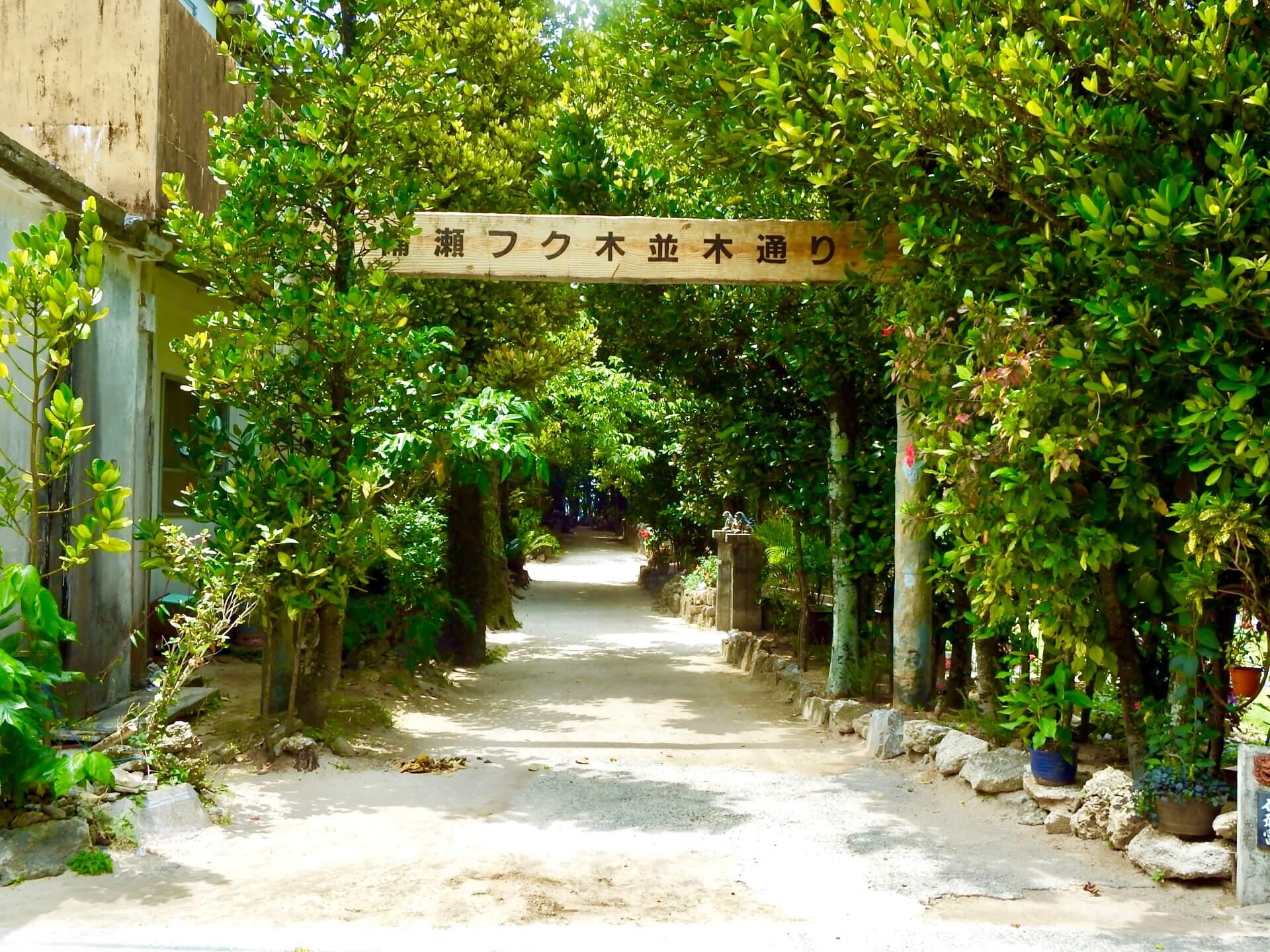 備瀬海岸 | 沖縄観光情報ガリンペイロ